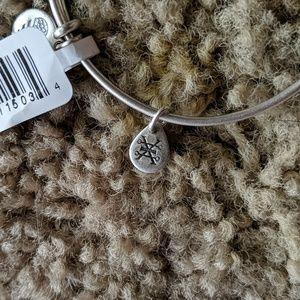 Alex and Ani Jewelry - Alex and Ani University of Michigan Bracelet